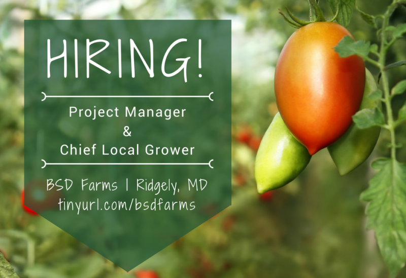 SBD Farms Hiring Management Positions | Ridgely, MD | Caroline County Economic Development